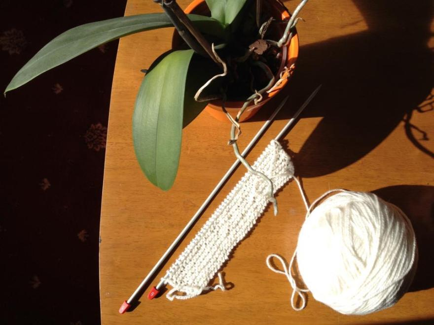 JT knitting attempt