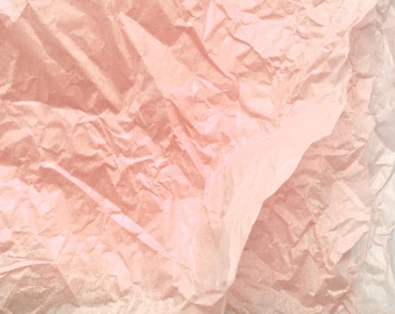ricepaper-JobinaTinnemans-red