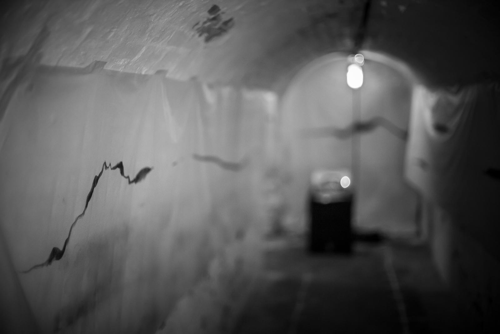 Jobina Tinnemans - 'Caponier' - photo Agata Urbaniak